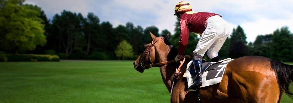 HorseRacingPic